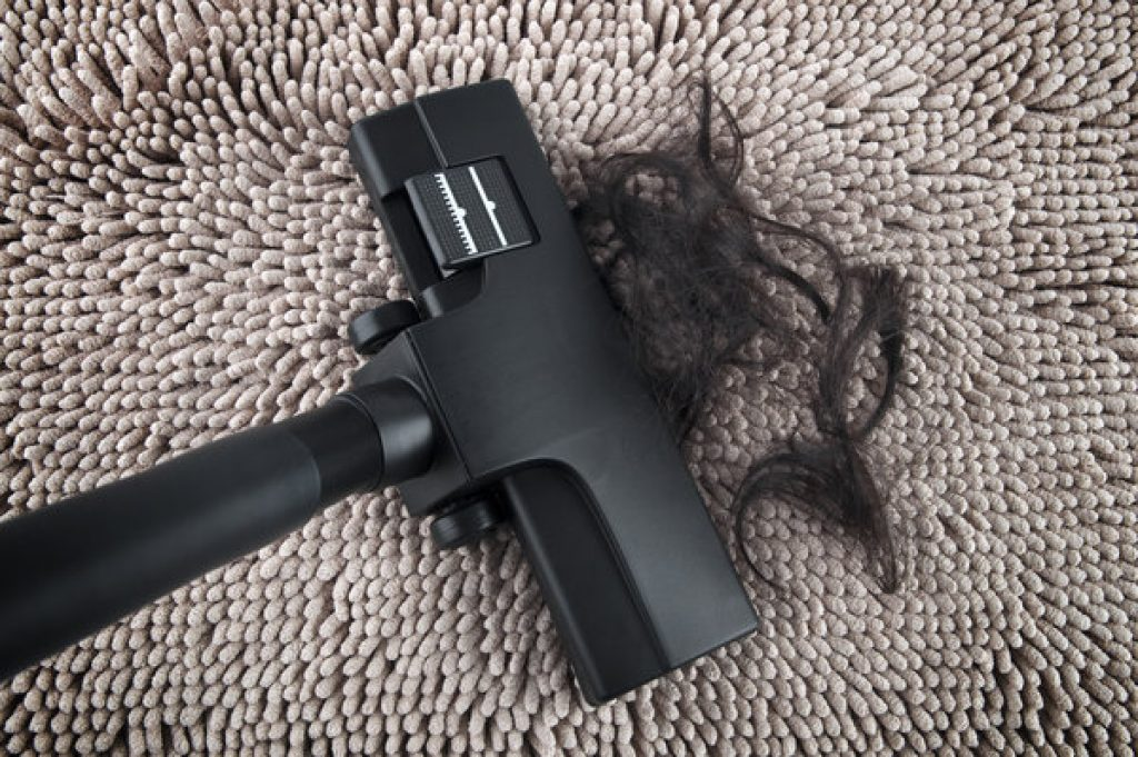 Staubsauger saugt Haare vom Teppich
